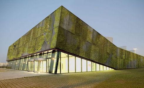 Биобетон и озеленение фасадов