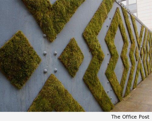 Экографити - одна из форм вертикального озеленения